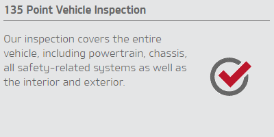 135 Point Vehicle Inspection