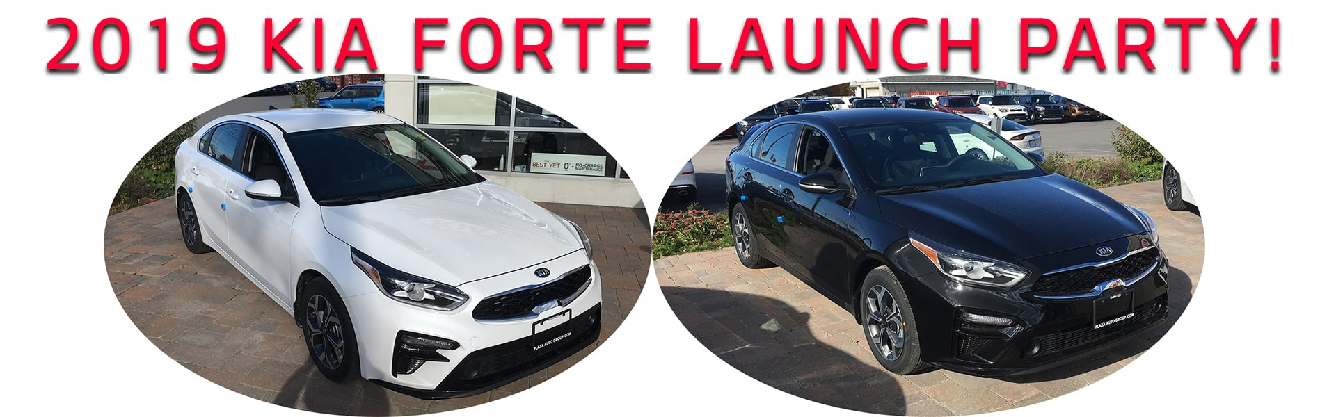 2019 Forte Launch Party